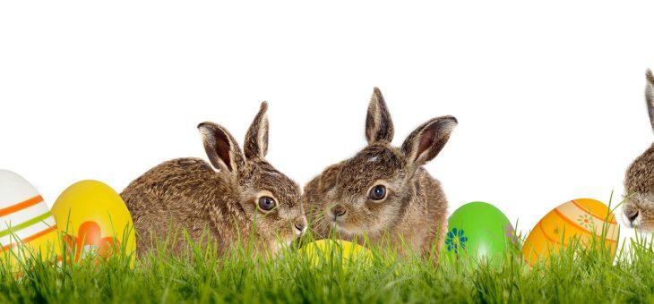 AllerBest Catering wünscht frohe Ostern
