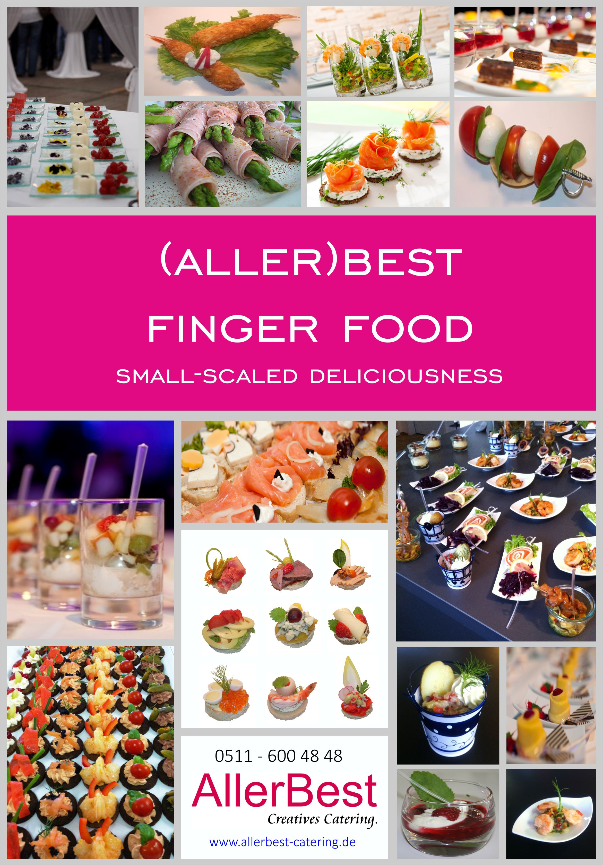 Titelblatt Fingerfood-Modul 2018 englisch